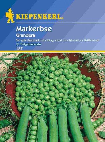 Erbsen Grandera / Markerbsen