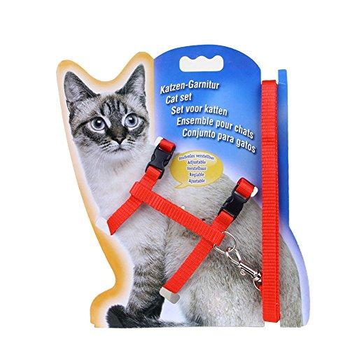 Verstellbares Geschirr, Leine mit Halsband, für Kaninchen/ Katze, robust