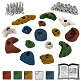 ALPIDEX 15 Klettergriffe im Starterset für Kinder - Schrauben und 30 Einschlagmuttern inklusive 15 Klettergriffe Klettersteine im Starterset für Kinder inklusive Schrauben und Einschlagmuttern, Farbe:bunt