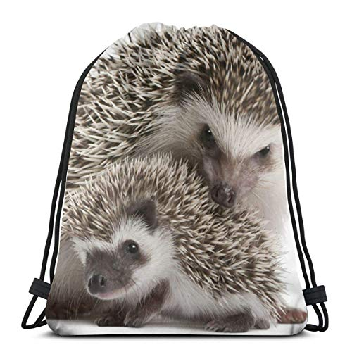 BXBX Trasportare Bags Mom And Baby Hedgehog Swim PE Bag Large Drawstring Sports Gym Bag for Women Mens with Zipper and Mesh Pockets,