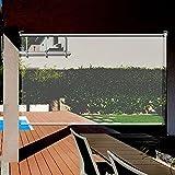 LIANG Pérgola De Patio Con Persiana Enrollable Transparente De Windows, Pantallas Impermeables Transparentes HD Con Accesorios (Color : Clear, Size : 100x200cm)