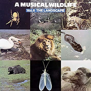 A Musical Wildlife, Vol. 6: The Landscape
