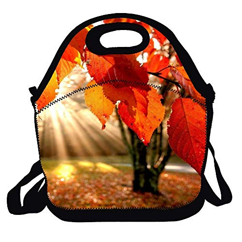 N\A Granero Rojo con Bolsa de Almuerzo de Pintura de Cabra, Bolsa de Almuerzo de Picnic para el Trabajo, Picnic, Viajes
