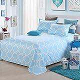 Sccarlettly Worth Having Blue Stripes Pattern Bettwäsche Chic Casual Einzelstück Cotton Twill Student Dormitory 1.5M Einzelbettdecken Kinder 1.8M 2.0M Doppelbett Bettwäsche (Größe 250 * 230Cm)