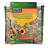 Wild Harvest Hamster And Gerbil Advanced Nutrition Diet, 4-Pound, Multicolor, One Size (E1950W)