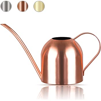Lilycase Watering Can Indoor Outdoor for Kids House Desk Office Plants and Garden Bonsai Stainless Steel (15oz) Copper