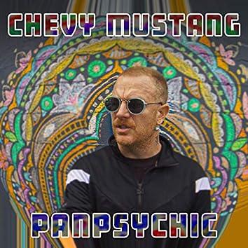 Panpsychic
