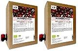 BIO Cranberry Muttersaft - 100% Direktsaft 6 Liter (2 x 3 Liter)
