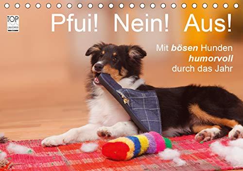 Pfui! Nein! Aus! - Mit bösen Hunden humorvoll durch das Jahr (Tischkalender 2020 DIN A5 quer)