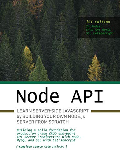 Node.js API: Learn server-side JavaScript by building your own Node.js server from scratch (English Edition)