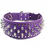 Dogs Kingdom Purple Faux Leather Spiked Studded Dog Collar 2' Wide Pet Collar Pitbull Boxer