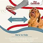 Company Of Animals Chien Pet Corrector 200 ml pour Interrompre les Comportements Indésirables #3