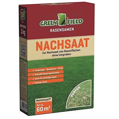 Greenfield 62511 Sursemis Semences de gazon Semences de pelouse 1 kg pour env. 60 qm