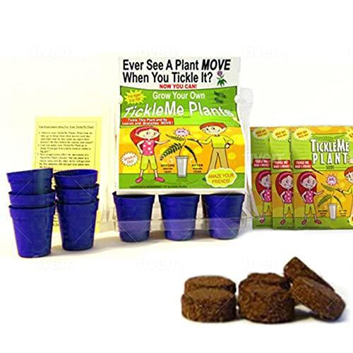 TickleMe Plant Greenhouse Garden Kit