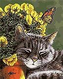 Nonebranded Pintura Al Óleo DIY Hermoso Gato Animal Cuadro Lienzo Pintura por Numeros Adultos Niños Manualidades para Pintar 40X50Cm
