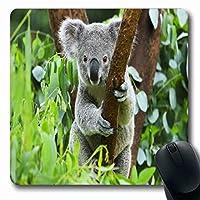 マウスパッドクイーンズランドグレーかわいいコアラクマ動物園ポーチオーストラリアオーストラリアツリーブリスベンデザイングレー楕円形7.9 X 9.5インチノンスリップゲームマウスパッドラバー長方形マット 18x22cm