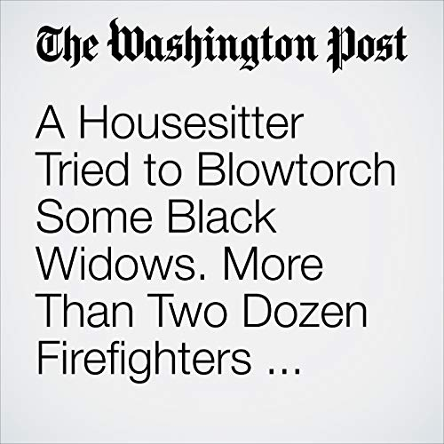 A Housesitter Tried to Blowtorch Some Black Widows. More Than Two Dozen Firefighters Responded to the Blaze. copertina