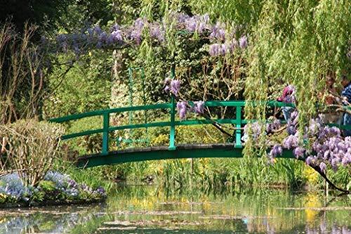 Papermoon Giverney Monet´s garden Vlies Fotobehang 500x280cm 10-Banen