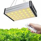 Bozily Lámpara LED de 1000 W de espectro completo con temporizador, lámpara Hydroponic LED para plantas, lámpara para plantas con mando a distancia, set para colgar, 168 ledes para plantas de interior