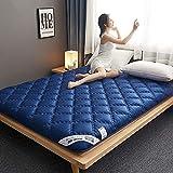 LLLZM Colchón futón, colchón de sueño Plegable,Colchón Doble Individual Tamaño Completo para Niños Adultos,para Invitados Camping Viaje90x200cm(35 * 79inch)