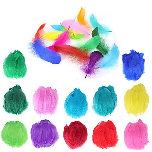 Mitening 300 Piezas Plumas de Colores, Plumas Manualidades, Plumas Naturales de Colores para Manualidades, Decoración para Pendientes, Bodas, Arte de DIY, Atrapasueños, Joyas (8-12 cm)