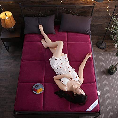 GFYL Colchón de Terciopelo Coralino, futón Antideslizante Grueso, colchón Plegable portátil Ultra Suave Tatami, Japanese Futon Mat Floor Mat Bed Dormitory Student,B,48 * 79inch