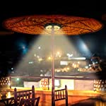 Patio Umbrella Light 28LED Parasol Mate Waterproof Light Wireless with 2 Level Modes and USB Rechargeable for Long Time… 14