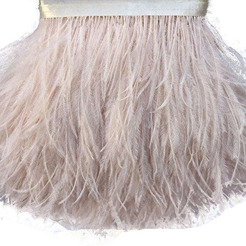 AABABUY Tira de plumas de avestruz de 2 yardas con ribete de plumas de avestruz (champán)