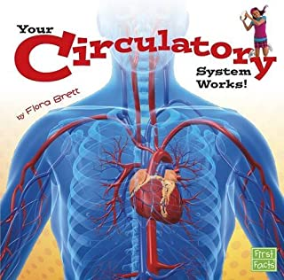 Your Circulatory System Works! (Your Body Systems)