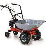 Lazer Carry–Carretilla con motor gasolina–capacidad 100kg–Honda gcv140