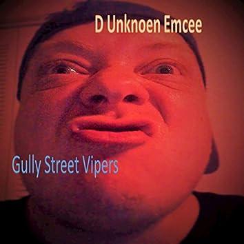 Gully Street Viper - EP
