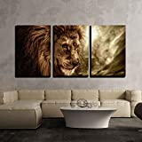 wall26 - 3 Piece Canvas Wall Art - Lion Against Stormy Sky - Modern Home Art Stretched and Framed Ready to Hang - 24'x36'x3 Panels