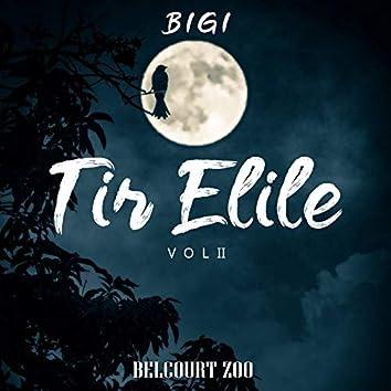 Tir Elile, Vol. 2