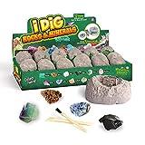 STKASE® Muestras minerales Dig Kit - Excavar 12 Gemas Reales con Este Kit De Excavación, Los Juguetes Educativos De Ciencia Hacen Grandes Actividades para Niños
