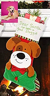 Best dogs in stockings Reviews
