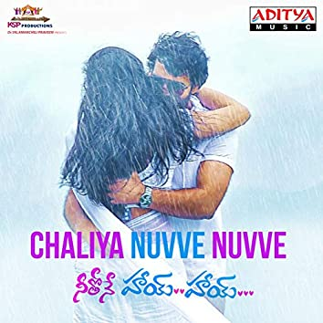"""Chaliya Nuvve Nuvve (From """"Neethone Hai Hai"""")"""