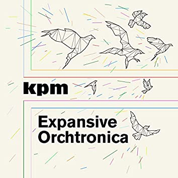 Expansive Orchtronica