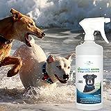 Geruchsneutralisierer für Hunde – natürlicher Entferner von Urin-Geruch - 9