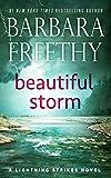 Bargain eBook - Beautiful Storm