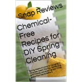 Chemical-Free Recipes for DIY Spring Cleaning: Spring means it's time for lounging in the grass, tossin' the disc, barbecuing with friends, and scouring ... space from top to bottom. (English Edition)