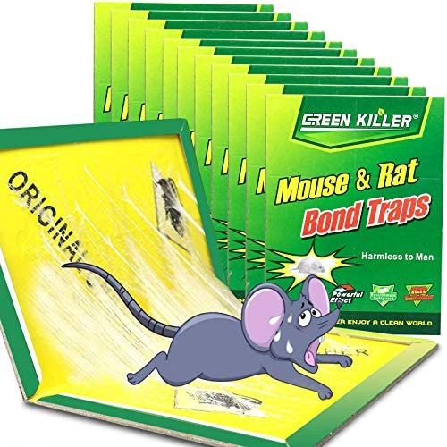 Ezoon 12 Pack Large Mouse Glue Traps with Enhanced Stickiness Rat Mouse Traps Snake Mouse Traps product image