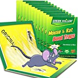 Ezoon 12 Pack Large Mouse Glue Traps with Enhanced Stickiness, Rat Mouse Traps, Snake Mouse Traps Sticky Pad Board for House Indoor Outdoor, Easy to Set, Extra Large (8.3' x 12')