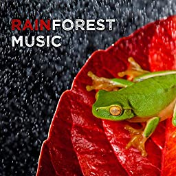 Stream Rainforest, Nature Sounds Relaxation: Music for Sleep