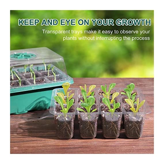 Acmind 10 Packs Seed Starter Trays Seedling Tray, Humidity Adjustable Kit with Dome and Base Greenhouse Grow Trays Mini… 2 Keep and eye on your growth:Our germination growing trays kit made of high quality transparent and durable plastic, this seed trays make it easy to observe your plants without interrupting the process. Seed starter tray contains: 10 x seed tray, 10 x bottom tray(5 Green & 5 Black), 10 x humidity dome(5 Green & 5 Black), 2 x garden tools, 20 x plant labels (A must have for seedling). Good Helper of Seed Starter:Adjustable vents on the humidity dome of this seed starter kit allow you to regulate the temperature and humidity of your seedling environment, so you have total control over the growing process.