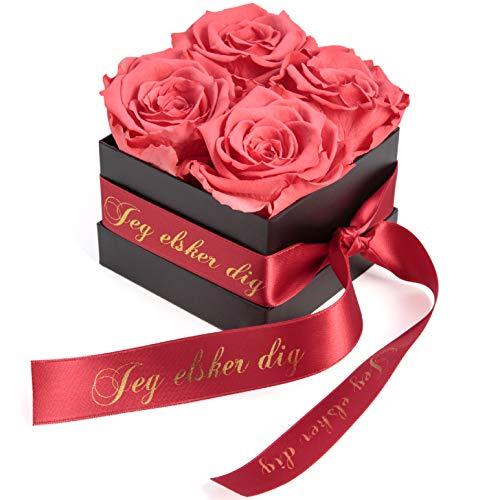 ROSEMARIE SCHULZ Heidelberg Rosenbox mit konservierten Rosen haltbar 3 Jahre / 8,5 x 8,5 cm/Flowerbox/Geschenk/Valentinstag/Geschenkbox für Frauen (Jeg elsker dig, Korall Rot)