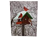 BANBERRY DESIGNS Winter Cardinal Print - LED Lighted Picture with Birdhouse and Cardinals - Christmas Wall Art