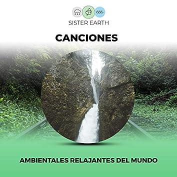 Canciones Ambientales Relajantes del Mundo