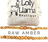 Amber Necklaces - Best Reviews Guide