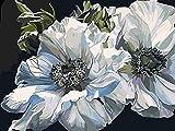 Pintar por Numeros Adultos Crisantemo Blanco Pintura Guiada por Numeros Pint por Número de Kits for Adultos Mayores Avanzada Niños Joven - Paint by Numbers 40x50cm (sin marco)