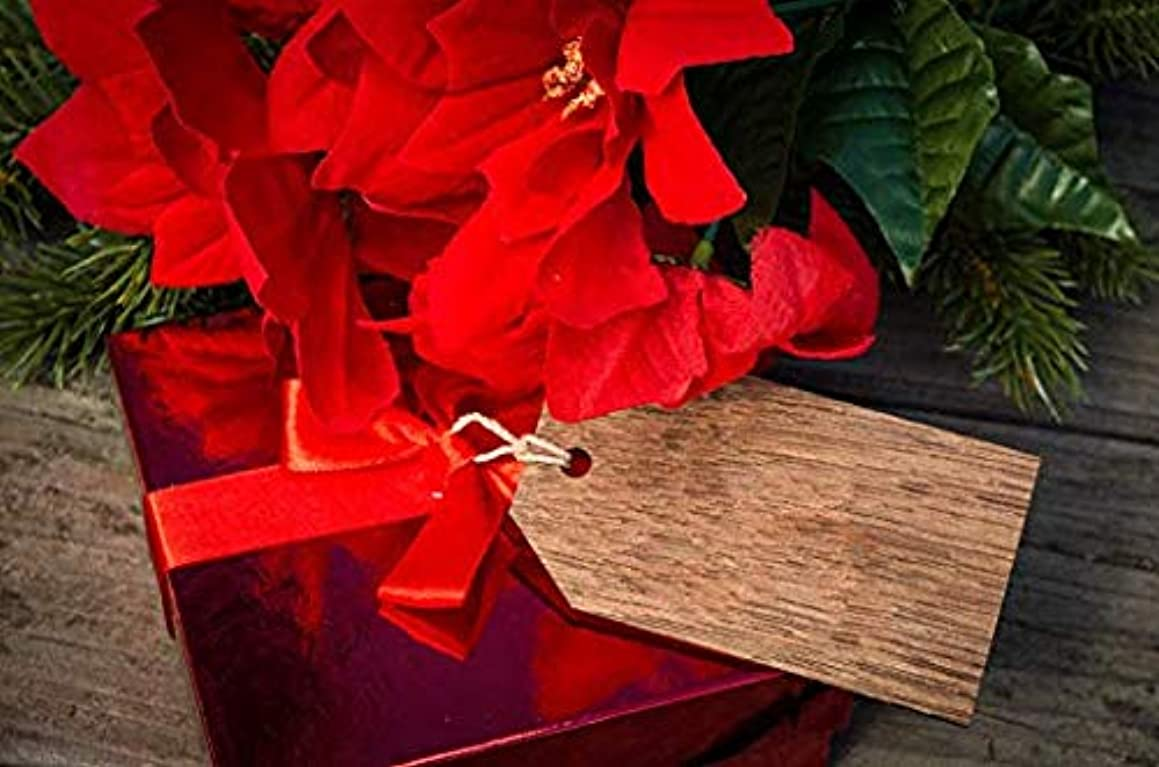 Stained Wood Gift Tag Set - Rustic Wooden Tags Perfect as Holiday Gifts Decor, Valentines Gift Tags, for Goody Bags, and Much Much!